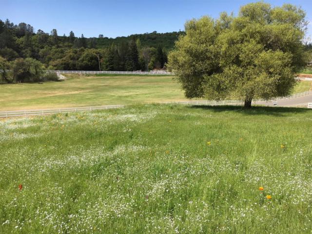 6341 Wagon Loop, Placerville, CA 95667 (MLS #18039654) :: Team Ostrode Properties