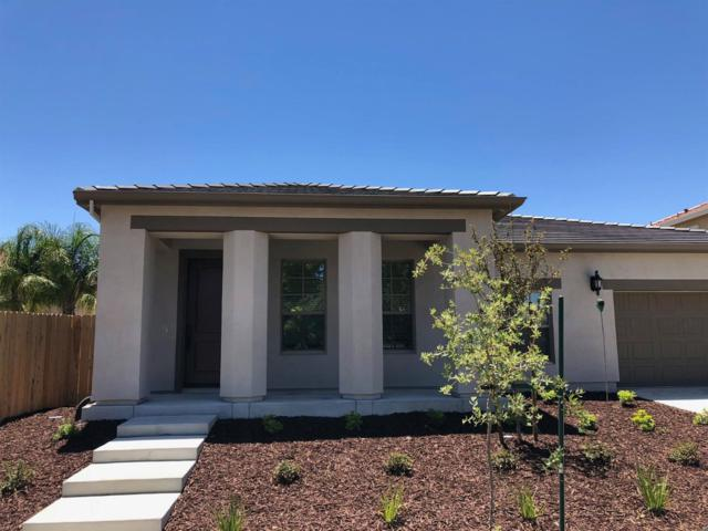 1240 Fawn Lily Drive, Patterson, CA 95363 (MLS #18039710) :: NewVision Realty Group