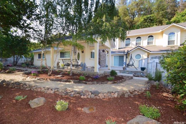 14674 Fiddletown Road, Fiddletown, CA 95629 (MLS #18039799) :: Team Ostrode Properties