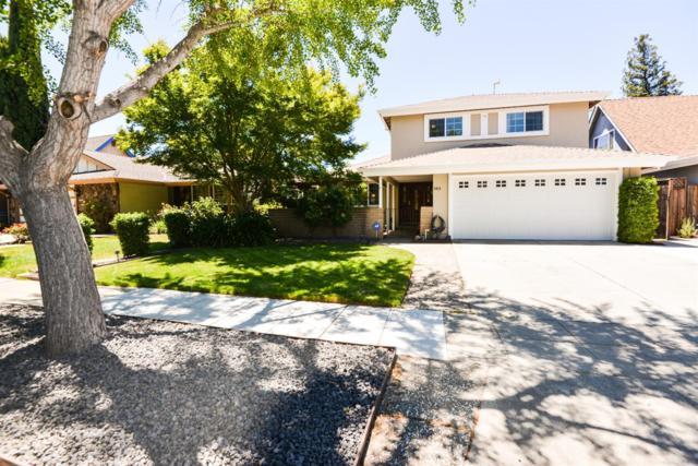 5819 Calpine Dr, San Jose, CA 95123 (MLS #18039945) :: Heidi Phong Real Estate Team