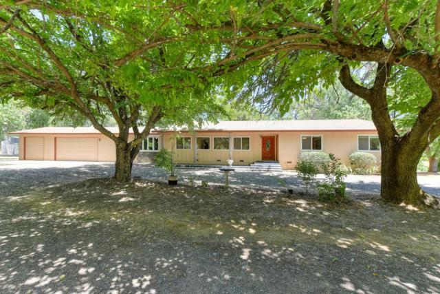 1400 Fowler Road, Newcastle, CA 95658 (MLS #18039951) :: NewVision Realty Group