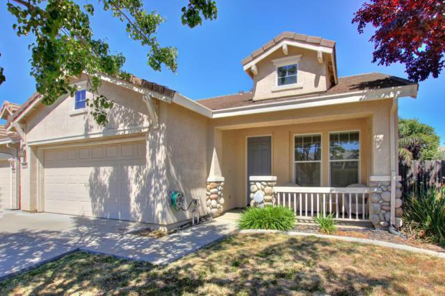 10023 Waterfield Drive, Elk Grove, CA 95757 (MLS #18039991) :: NewVision Realty Group