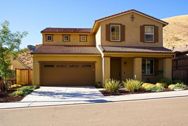 9105 Golf Canyon Drive, Patterson, CA 95363 (MLS #18040089) :: Team Ostrode Properties