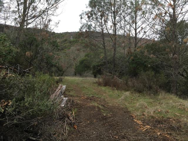 16-Lot Fawn Court, Napa, CA 94558 (MLS #18040441) :: Dominic Brandon and Team