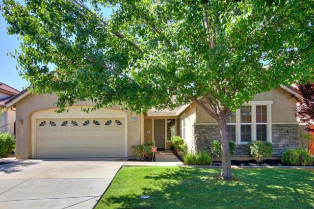 5626 Matina Drive, Elk Grove, CA 95757 (MLS #18040460) :: NewVision Realty Group