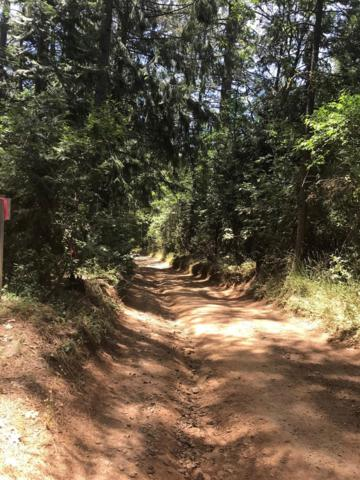 0 Parcel, Pollock Pines, CA 95726 (MLS #18040475) :: NewVision Realty Group