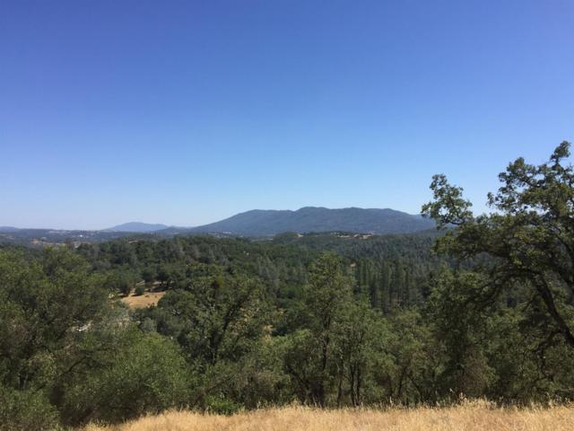 4108 Highway 49, Mokelumne Hill, CA 95249 (MLS #18040659) :: NewVision Realty Group