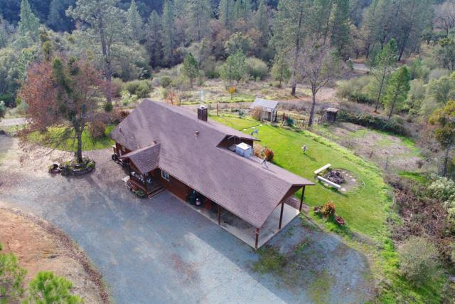 14609 Shakeridge Road, Sutter Creek, CA 95685 (MLS #18040874) :: NewVision Realty Group