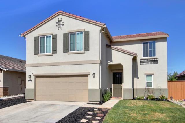 7549 Chappelle, Elk Grove, CA 95757 (MLS #18041113) :: Heidi Phong Real Estate Team
