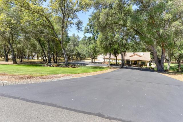 5300 Amber Fields Drive, Shingle Springs, CA 95682 (MLS #18041130) :: NewVision Realty Group