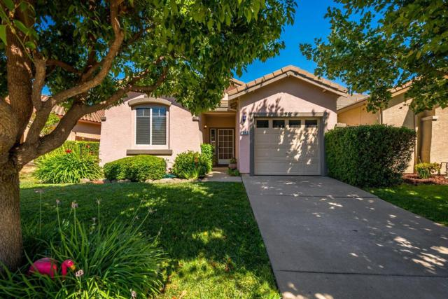 1543 Whitstable Drive, Roseville, CA 95747 (MLS #18041200) :: Gabriel Witkin Real Estate Group