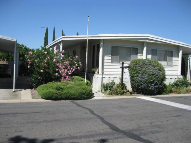 203 Plaza, Lodi, CA 95240 (MLS #18041359) :: NewVision Realty Group