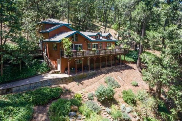 8830 Mosquito Road, Placerville, CA 95667 (MLS #18041367) :: NewVision Realty Group
