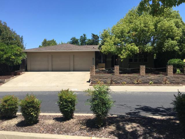 1121 Parkview Drive, Roseville, CA 95661 (MLS #18042065) :: NewVision Realty Group