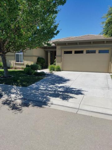1113 Clearwater Creek Boulevard, Manteca, CA 95336 (MLS #18042381) :: The Del Real Group