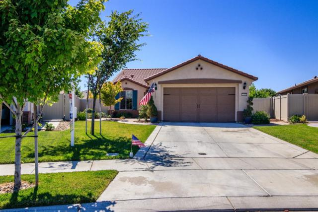 1408 Carriage House Street, Manteca, CA 95336 (MLS #18043350) :: REMAX Executive