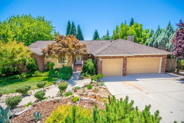 11220 Rosemary Drive, Auburn, CA 95603 (MLS #18044335) :: Dominic Brandon and Team