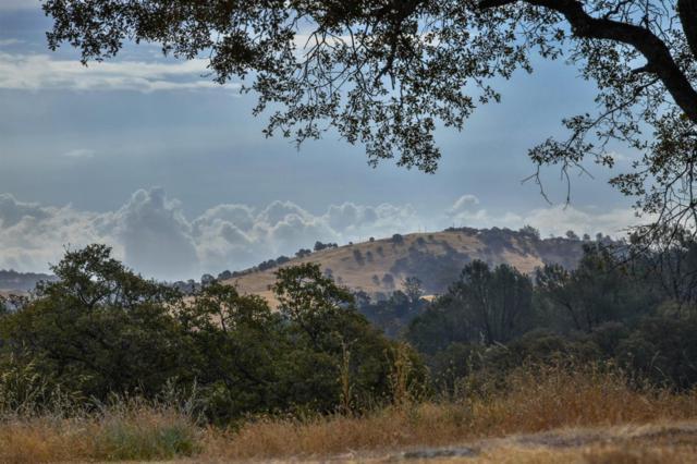 0 Lot 19 Deer Hollow Trail, Browns Valley, CA 95918 (MLS #18044359) :: Keller Williams - Rachel Adams Group