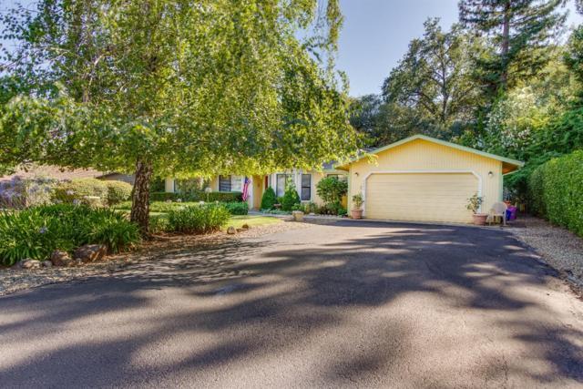 2662 Royal Park Drive, Cameron Park, CA 95682 (MLS #18044464) :: NewVision Realty Group