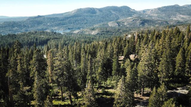 10445 Crystal Lake Road, Emigrant Gap, CA 95959 (MLS #18044688) :: NewVision Realty Group