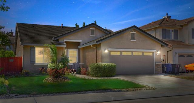 88 Argillite Avenue, Lathrop, CA 95330 (MLS #18044895) :: REMAX Executive