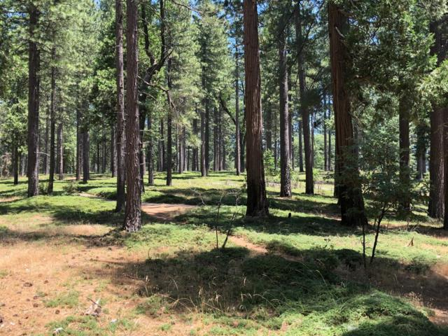 1-Acre Sly Park Road, Pollock Pines, CA 95726 (MLS #18045164) :: The MacDonald Group at PMZ Real Estate