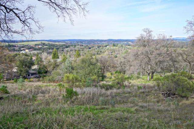 3317 Morel Way, Placerville, CA 95667 (MLS #18045867) :: Dominic Brandon and Team