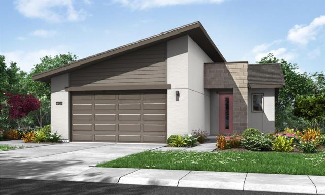 9176 Starry Night Lane, Roseville, CA 95747 (MLS #18045876) :: The Del Real Group