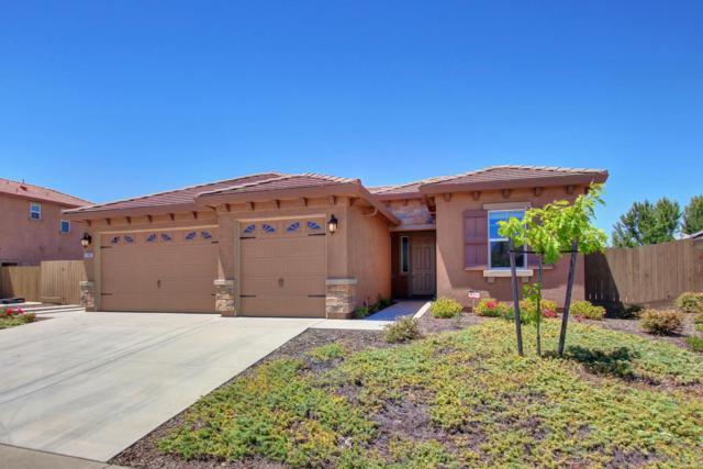 11063 Tinta Fina Drive, Rancho Cordova, CA 95670 (MLS #18046016) :: NewVision Realty Group
