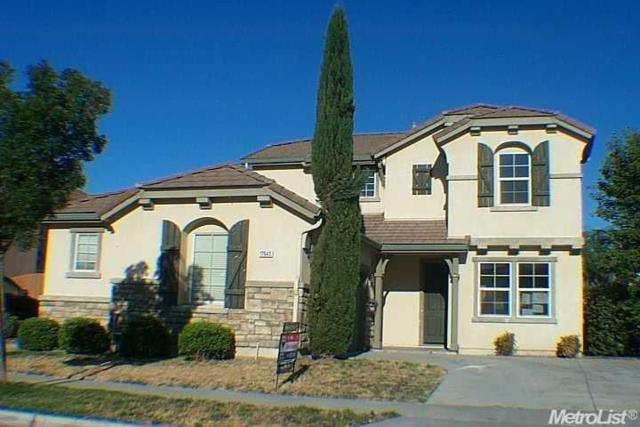 17643 Wheat Field Street, Lathrop, CA 95330 (MLS #18046572) :: REMAX Executive