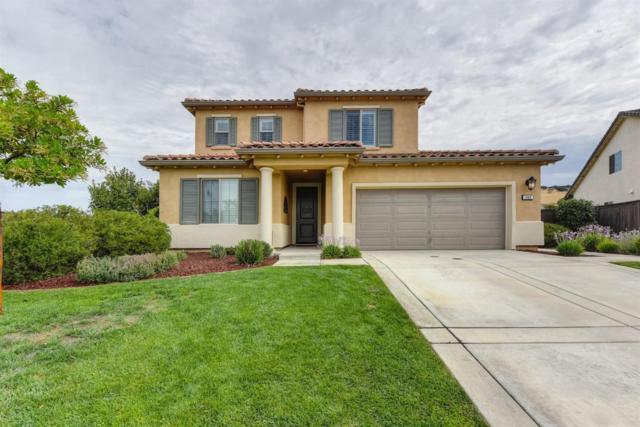 202 Calistoga Court, El Dorado Hills, CA 95762 (MLS #18046901) :: Keller Williams - Rachel Adams Group
