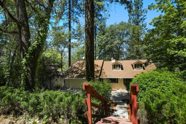 15880 Names Drive, Grass Valley, CA 95949 (MLS #18047380) :: Dominic Brandon and Team