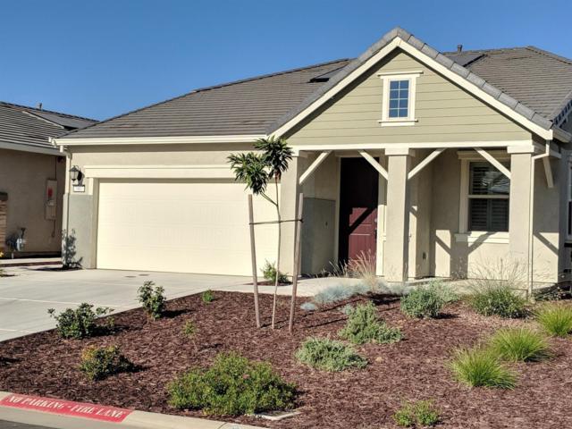 7007 De La Vina Drive, El Dorado Hills, CA 95762 (MLS #18047519) :: Keller Williams - Rachel Adams Group
