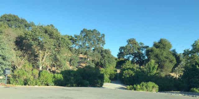 0 Stagecoach Ct., Valley Springs, CA 95252 (MLS #18047733) :: Keller Williams - Rachel Adams Group