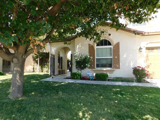 946 Zurich, Manteca, CA 95337 (MLS #18047901) :: NewVision Realty Group