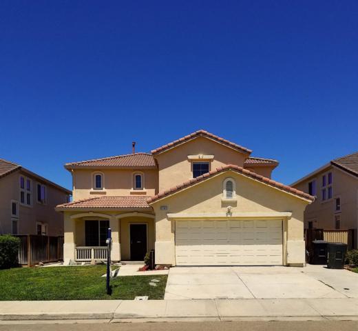 3165 Milton Jenson Court, Tracy, CA 95377 (MLS #18048212) :: REMAX Executive