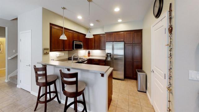 176 W Lucita Way, Mountain House, CA 95391 (MLS #18048453) :: REMAX Executive