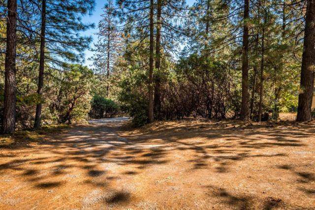 6725 Diablo View Trail, Placerville, CA 95667 (MLS #18048574) :: Dominic Brandon and Team