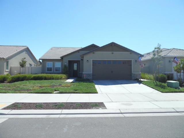 2740 Shadow Berry Drive, Manteca, CA 95336 (MLS #18048746) :: REMAX Executive