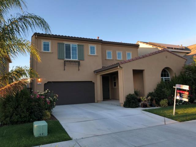 2595 Remy Javier Ct, Tracy, CA 95377 (MLS #18048796) :: Dominic Brandon and Team