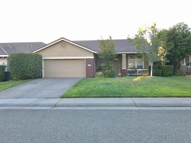 5512 New Vista Drive, Rocklin, CA 95765 (MLS #18048810) :: NewVision Realty Group