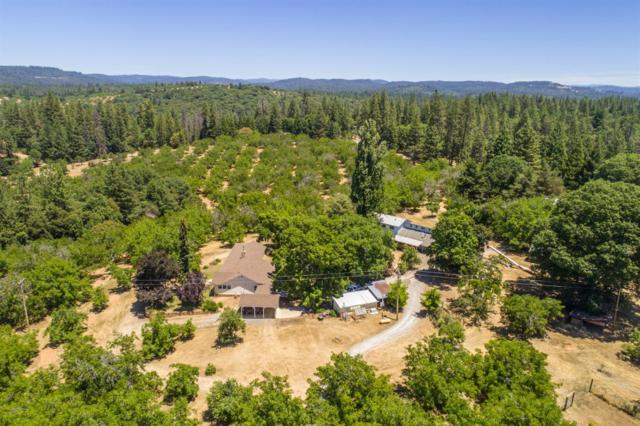 1000 Stanley Road, West Point, CA 95255 (MLS #18048864) :: Dominic Brandon and Team