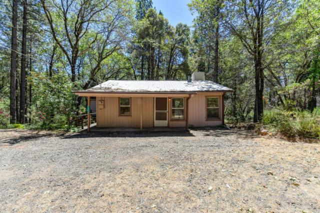 13364 State Highway 49, Grass Valley, CA 95949 (MLS #18049039) :: Dominic Brandon and Team