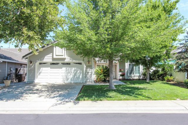 9227 Summer Tea Way, Elk Grove, CA 95624 (MLS #18049289) :: NewVision Realty Group