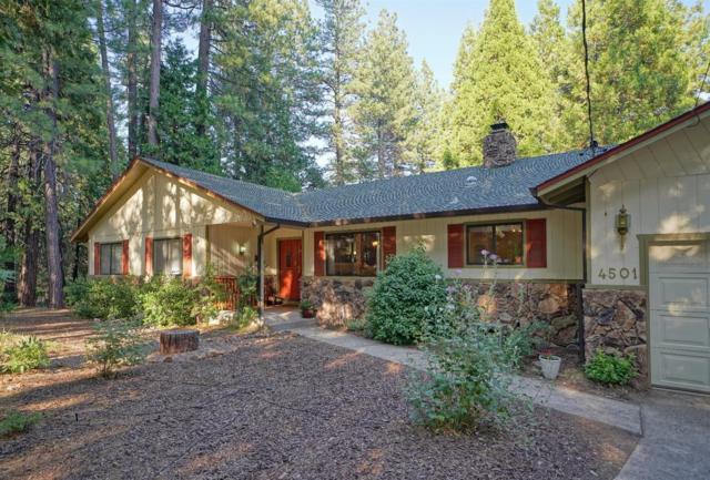 4501 Park Woods Drive, Pollock Pines, CA 95726 (MLS #18049327) :: Heidi Phong Real Estate Team