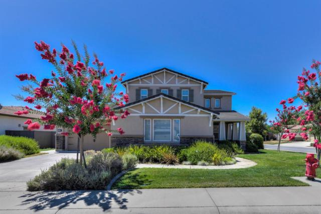 9028 Pecor Way, Orangevale, CA 95662 (MLS #18049376) :: Keller Williams - Rachel Adams Group