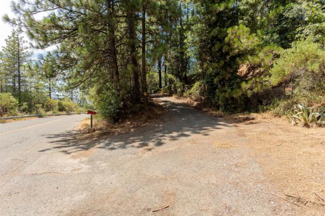 1833 Cardinal Drive, Placerville, CA 95667 (MLS #18049435) :: Dominic Brandon and Team