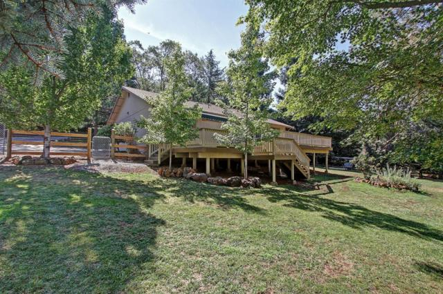 16533 George Way, Grass Valley, CA 95949 (MLS #18049584) :: Dominic Brandon and Team