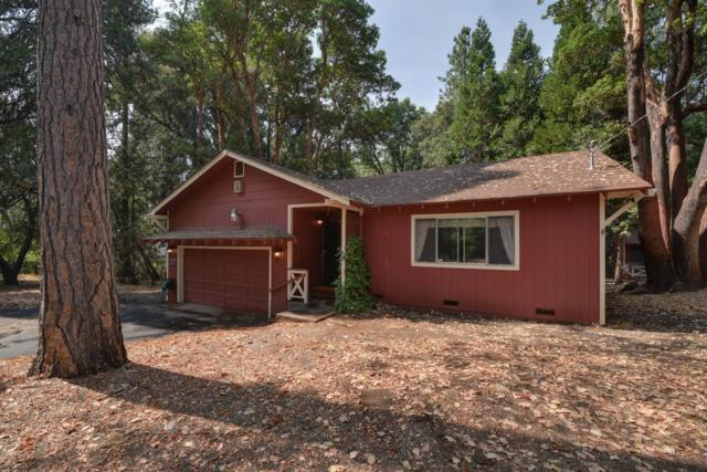 23399 Valley View Drive, Pioneer, CA 95666 (MLS #18049662) :: Dominic Brandon and Team