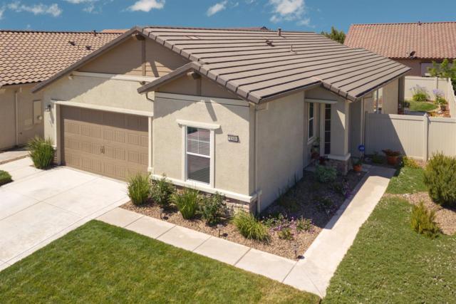 1346 Chestnut Hill Drive, Manteca, CA 95336 (MLS #18050008) :: REMAX Executive